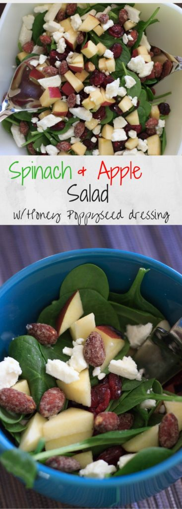 Spinach salad with apple, feta, dried cranberries and honey almonds. Inspired by the Enlightened Spinach Salad from Mellow Mushroom. Paired with my honey poppyseed dressing, you'll never want to make any different kind of salad again.