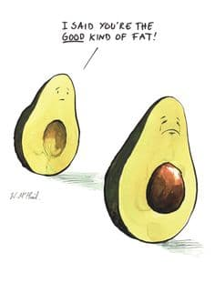 Avocado meme good kind of fat