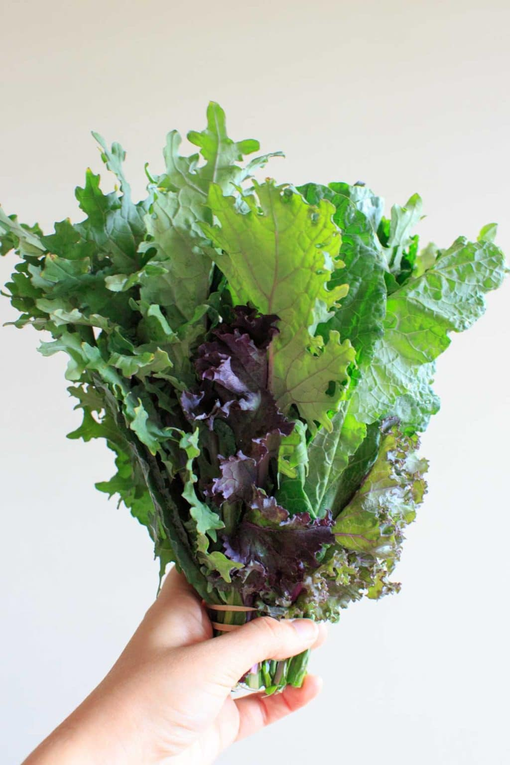 Produce from Peaceful River Farm - mixed lettuc