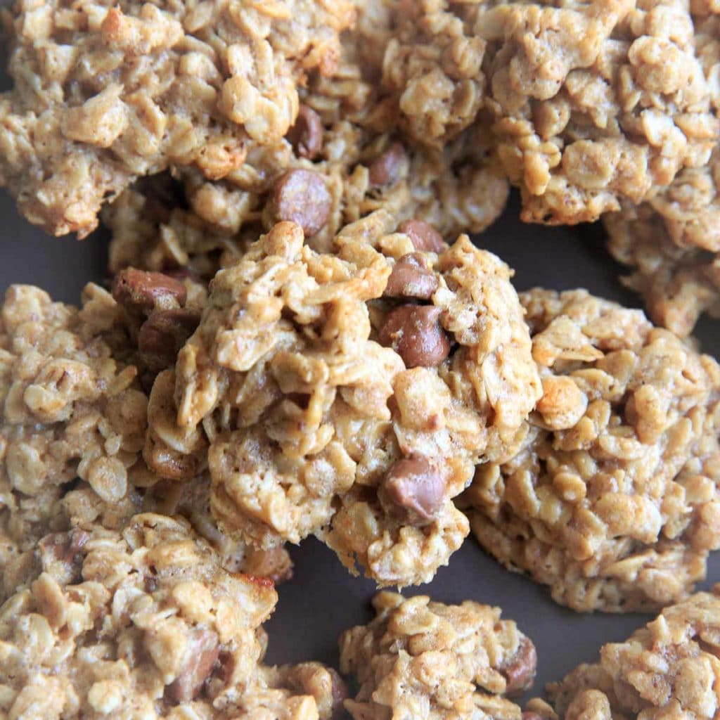 Gluten free lactation cookies with oats, peanut butter and chocolate chips.