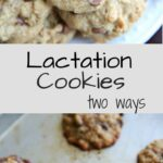 These nutrition-packed cookies are referred to as lactation cookies because they help nursing mothers produce milk, but they can be eaten by anyone! Made two ways, there is a gluten-free recipe with peanut butter as well as an easily customized flour cookie.