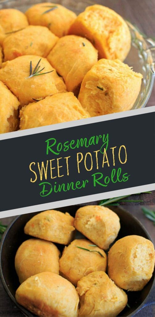 Rosemary Sweet Potato Dinner Rolls. Perfect for holidays, dinner parties, and using up leftover mashed sweet potatoes.