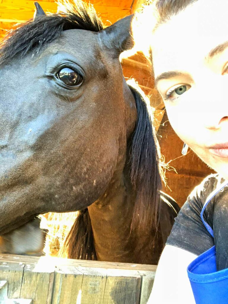 Horse wanted to take a selfie