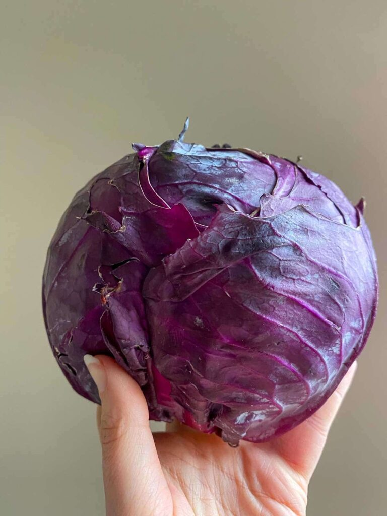 hand holding purple cabbage in the air